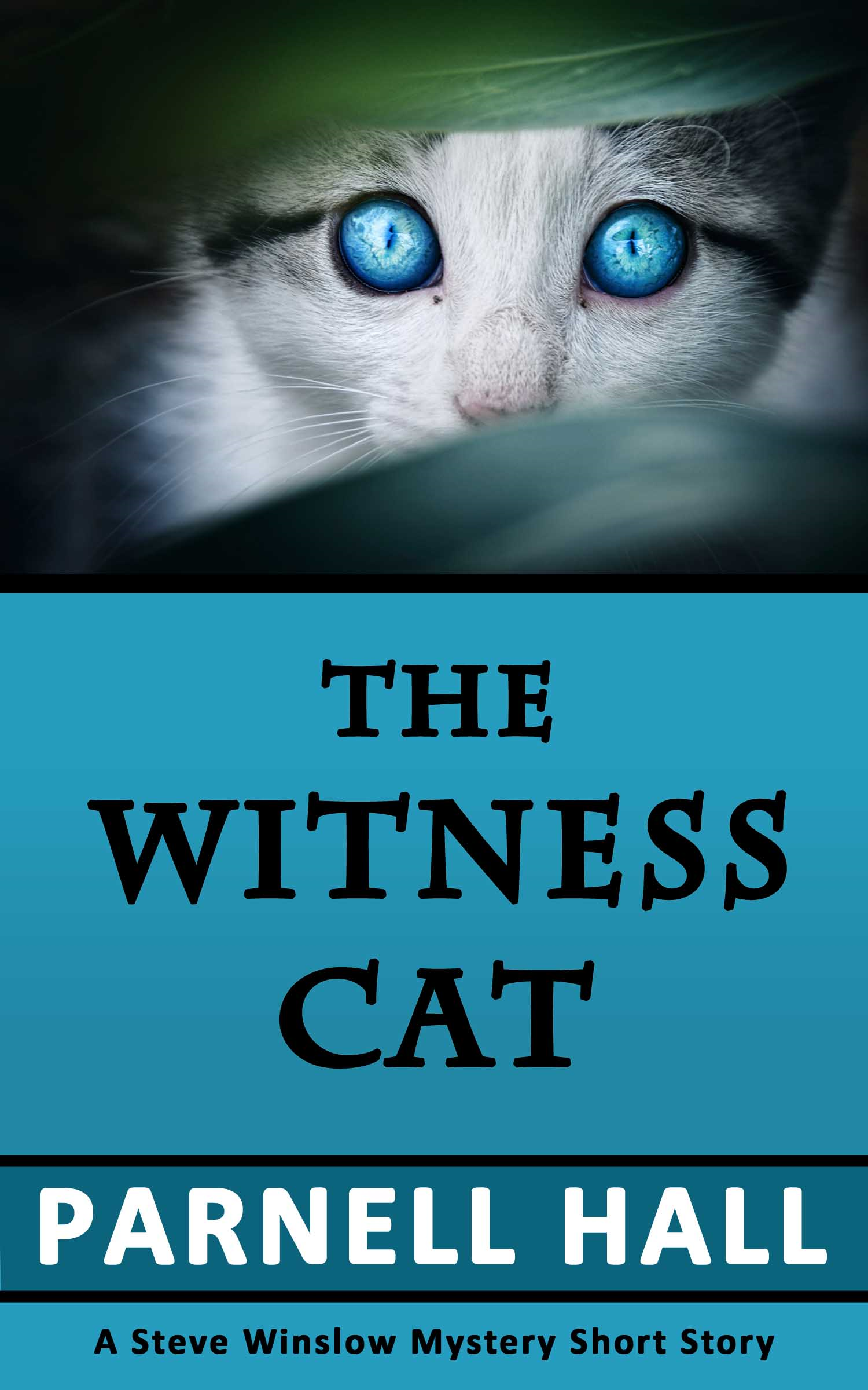 The Witness Cat