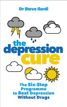 The Depression Cure The Six-Step Programme to Beat Depression Without Drugs