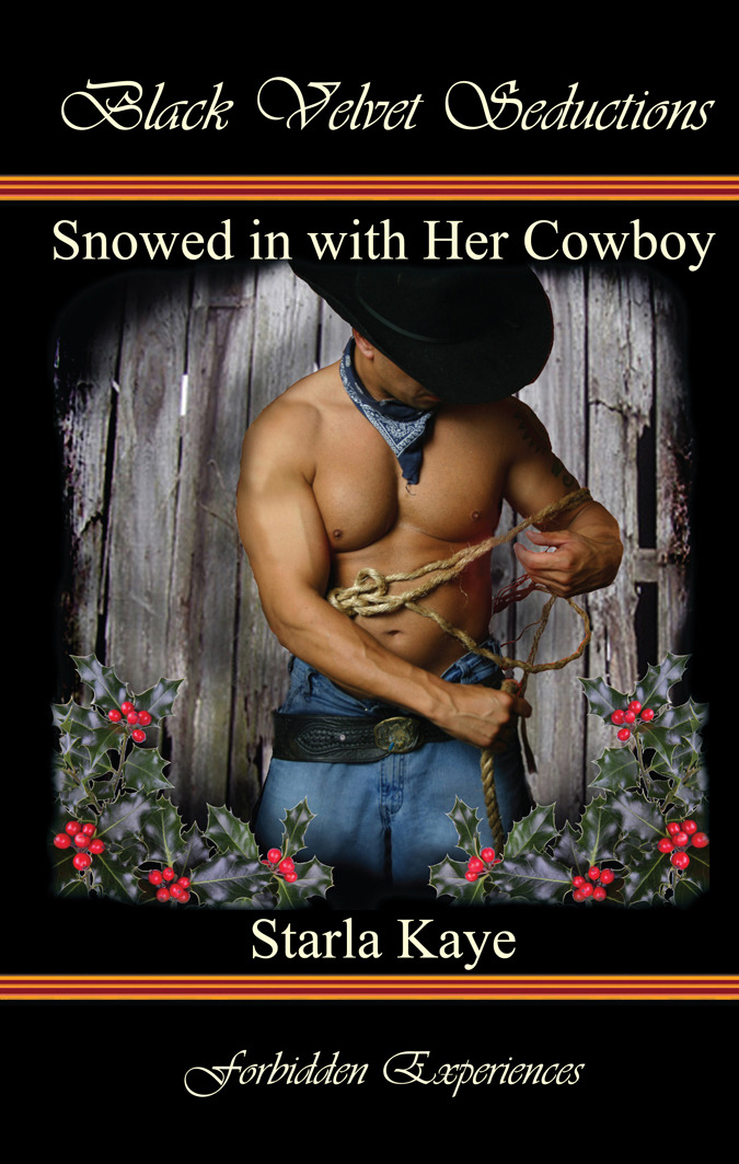 Snowed in with Her Cowboy