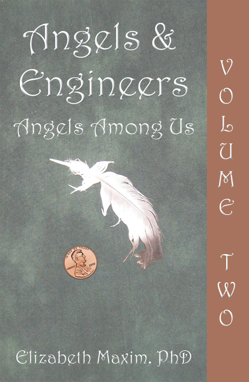 Angels and Engineers (Volume II): Angels Among Us