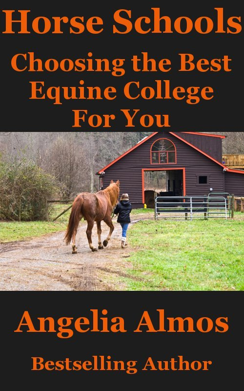 Horse Schools: Choosing the Best Equine College For You