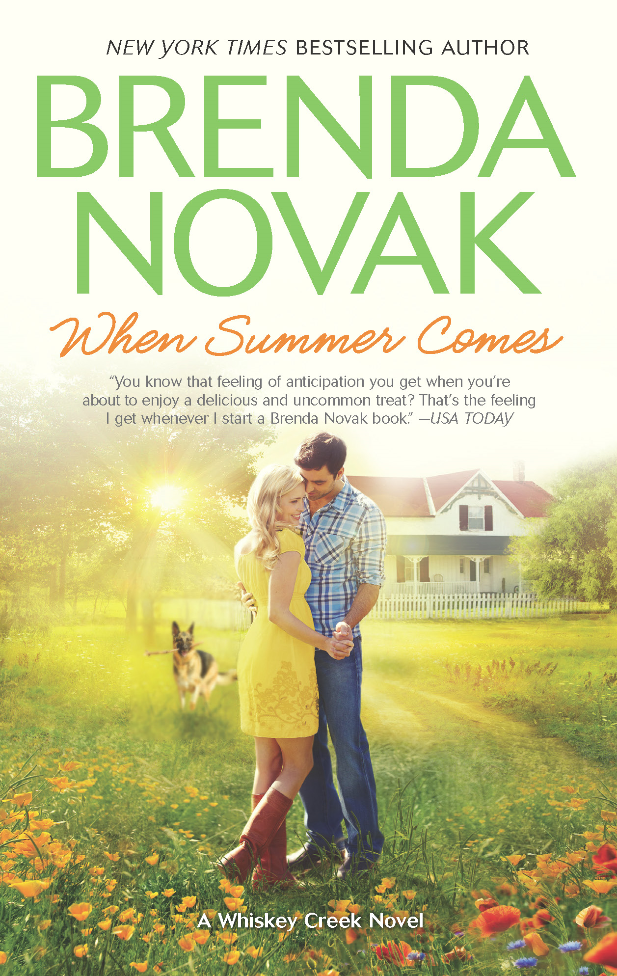 When Summer Comes By: Brenda Novak