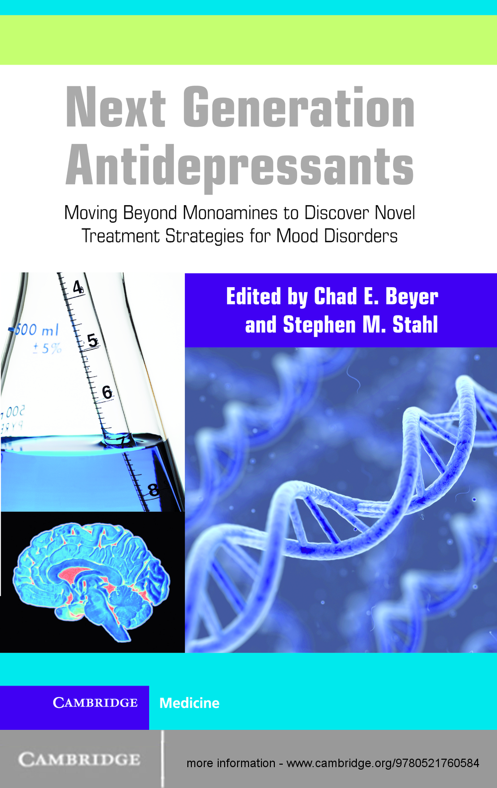Next Generation Antidepressants Moving Beyond Monoamines to Discover Novel Treatment Strategies for Mood Disorders