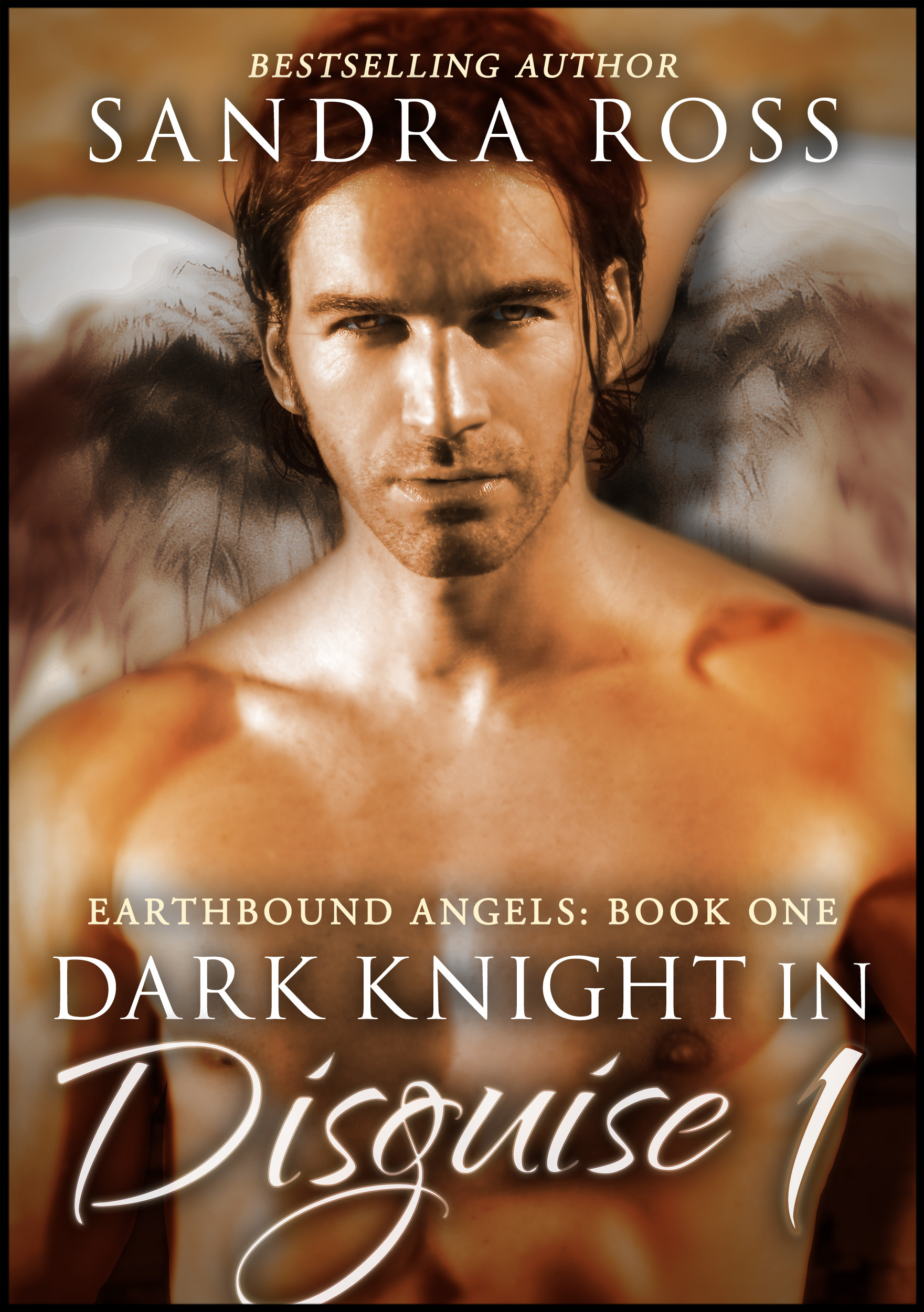Dark Knight in Disguise I: Earthbound Angels Book 1