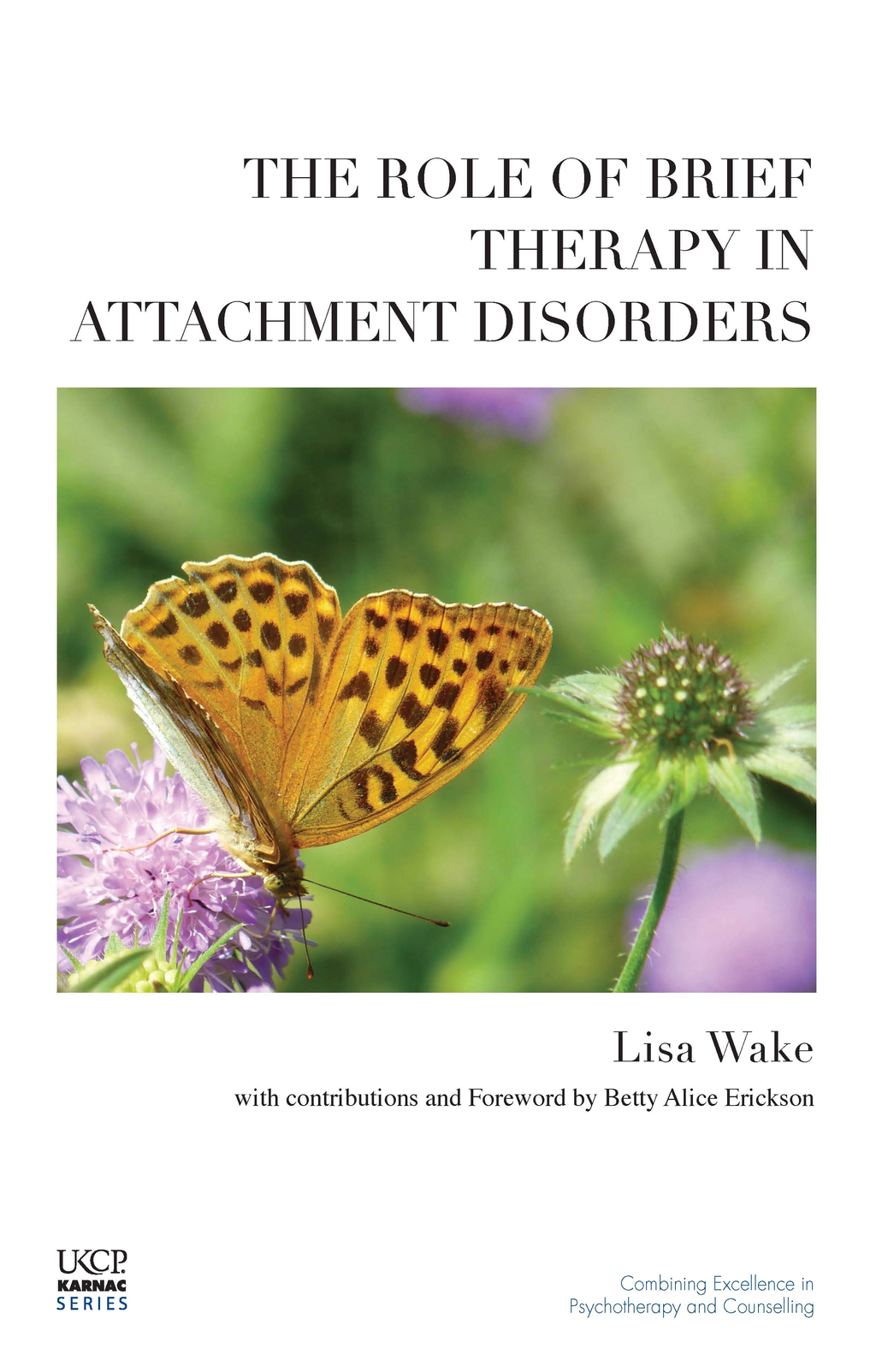 The Role of Brief Therapy in Attachment Disorders