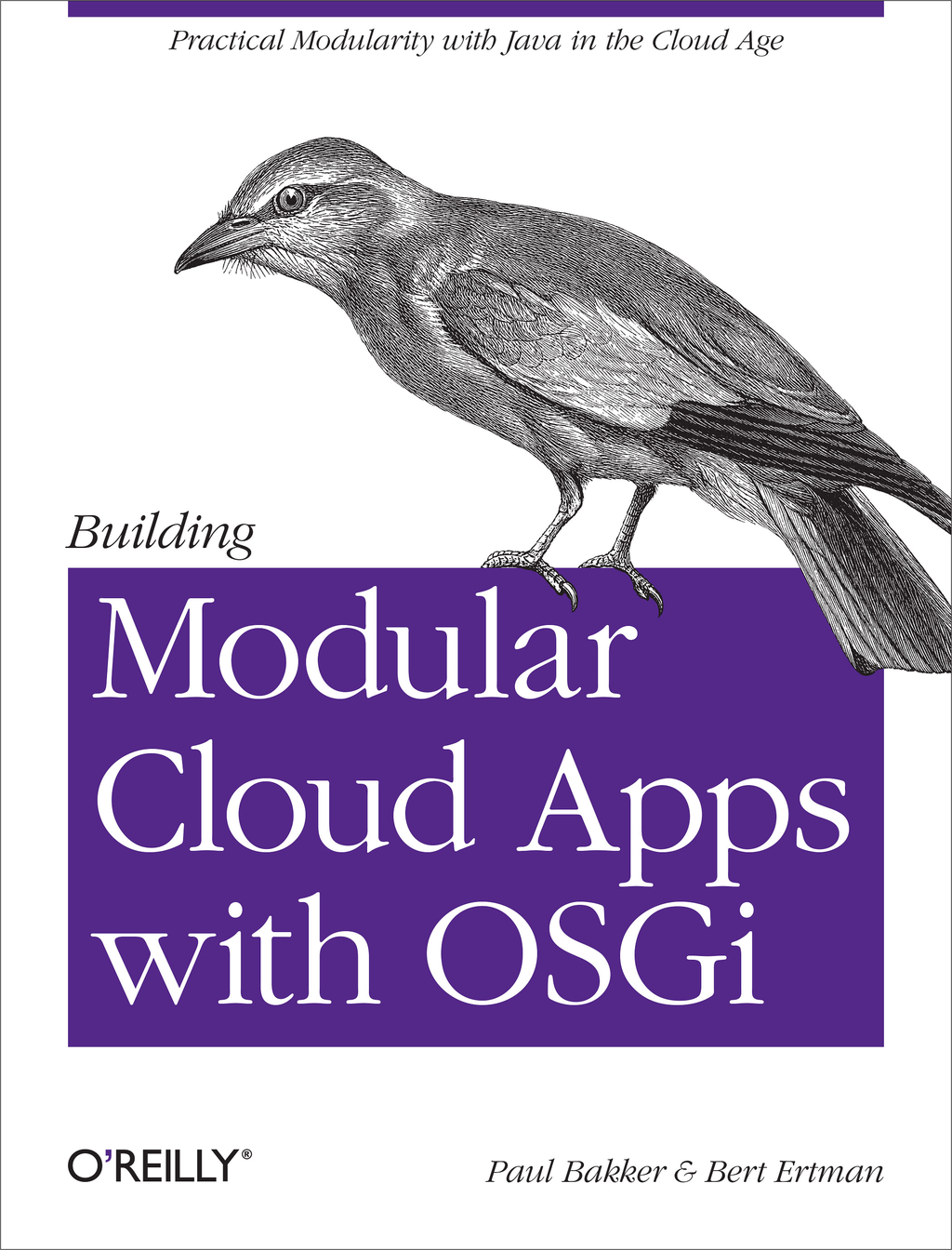 Building Modular Cloud Apps with OSGi By: Bert Ertman,Paul Bakker