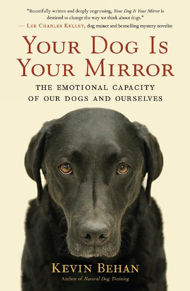 Your Dog Is Your Mirror By: Kevin Behan