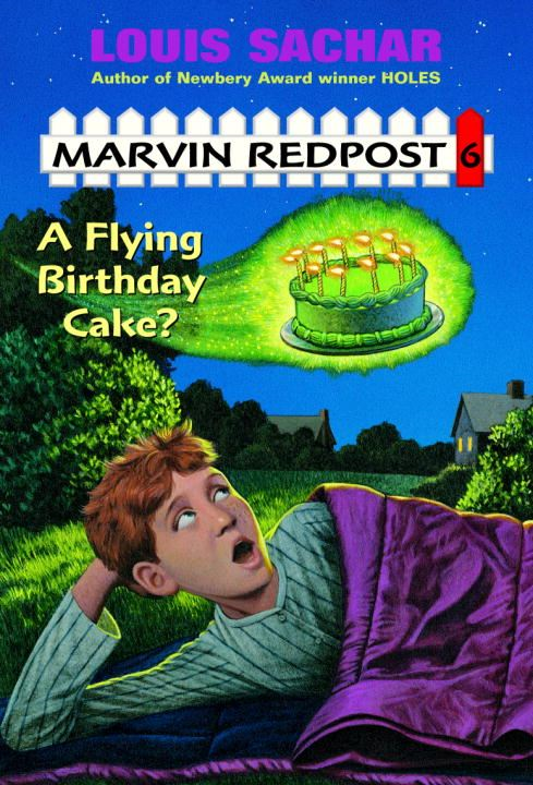 A Flying Birthday Cake? By: Louis Sachar,Amy Wummer