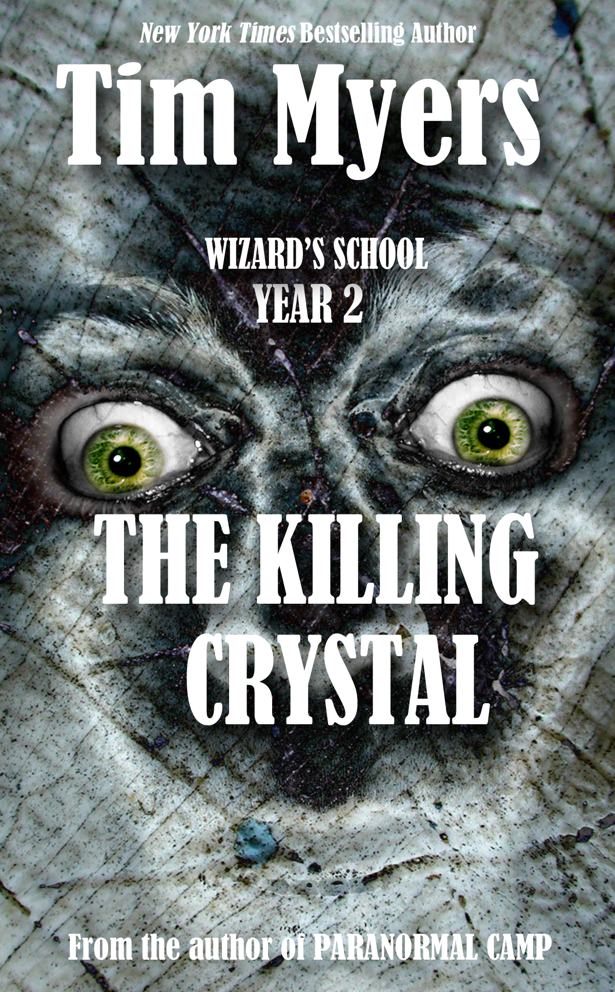 Wizard's School: Year 2, The Killing Crystal