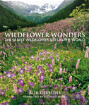 Wildflower Wonders: