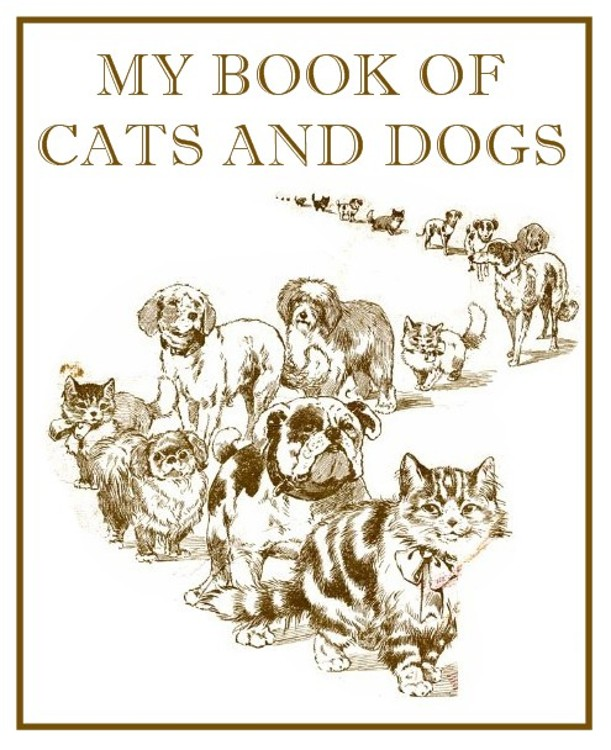 My Book of Cats and Dogs By: M. L. Gabriel