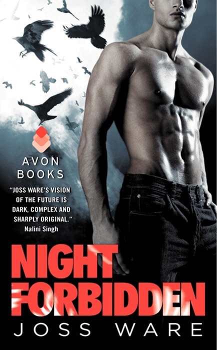 Night Forbidden: Envy Chronicles, Book 5