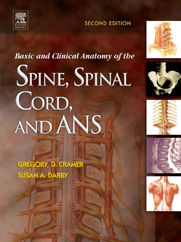 Basic and Clinical Anatomy of the Spine,  Spinal Cord,  and ANS