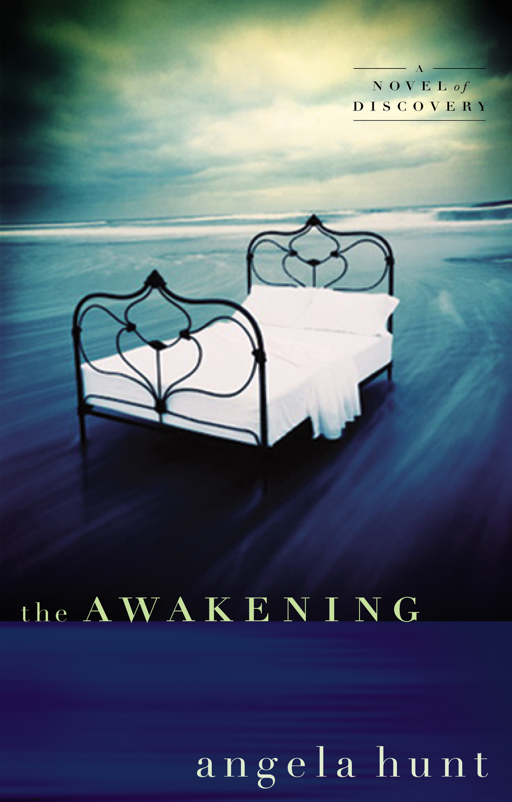 The Awakening By: Angela Hunt