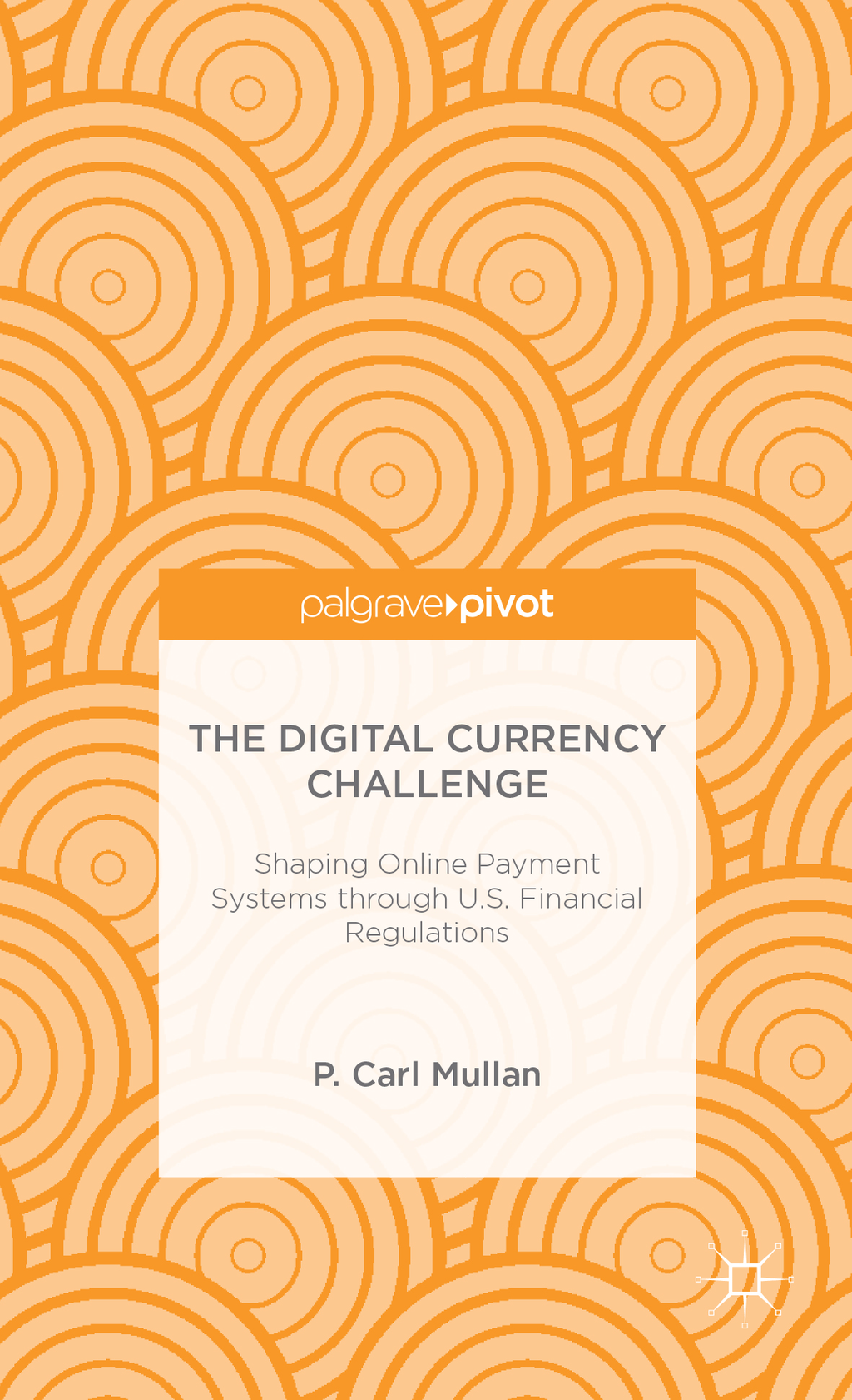 The Digital Currency Challenge Shaping Online Payment Systems through U.S. Financial Regulations