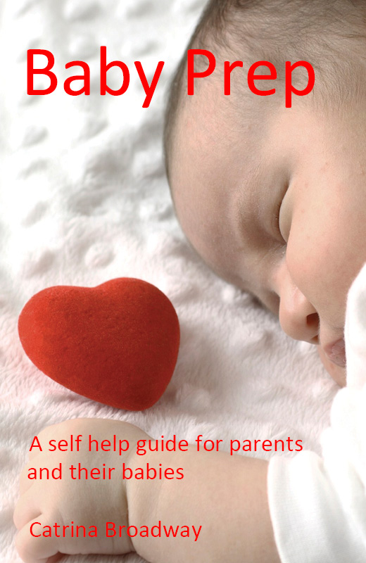 Baby Prep: A Pratical Guide for Parents and their Babies