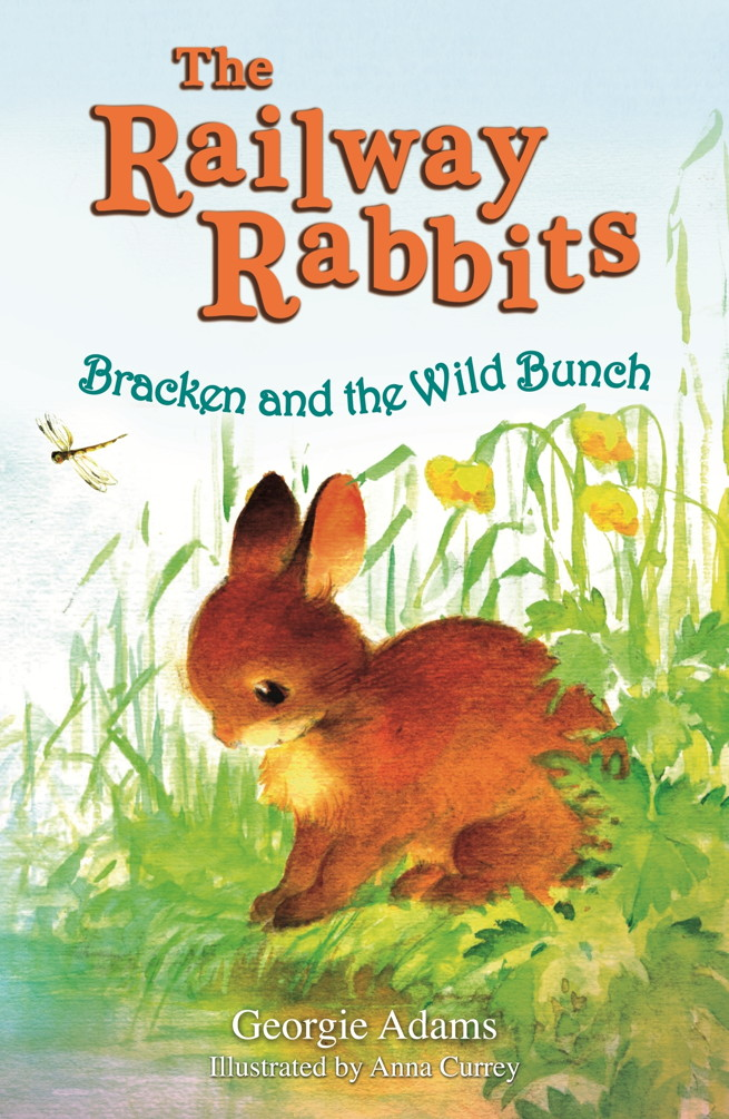 Bracken and the Wild Bunch (Railway Rabbits 11)