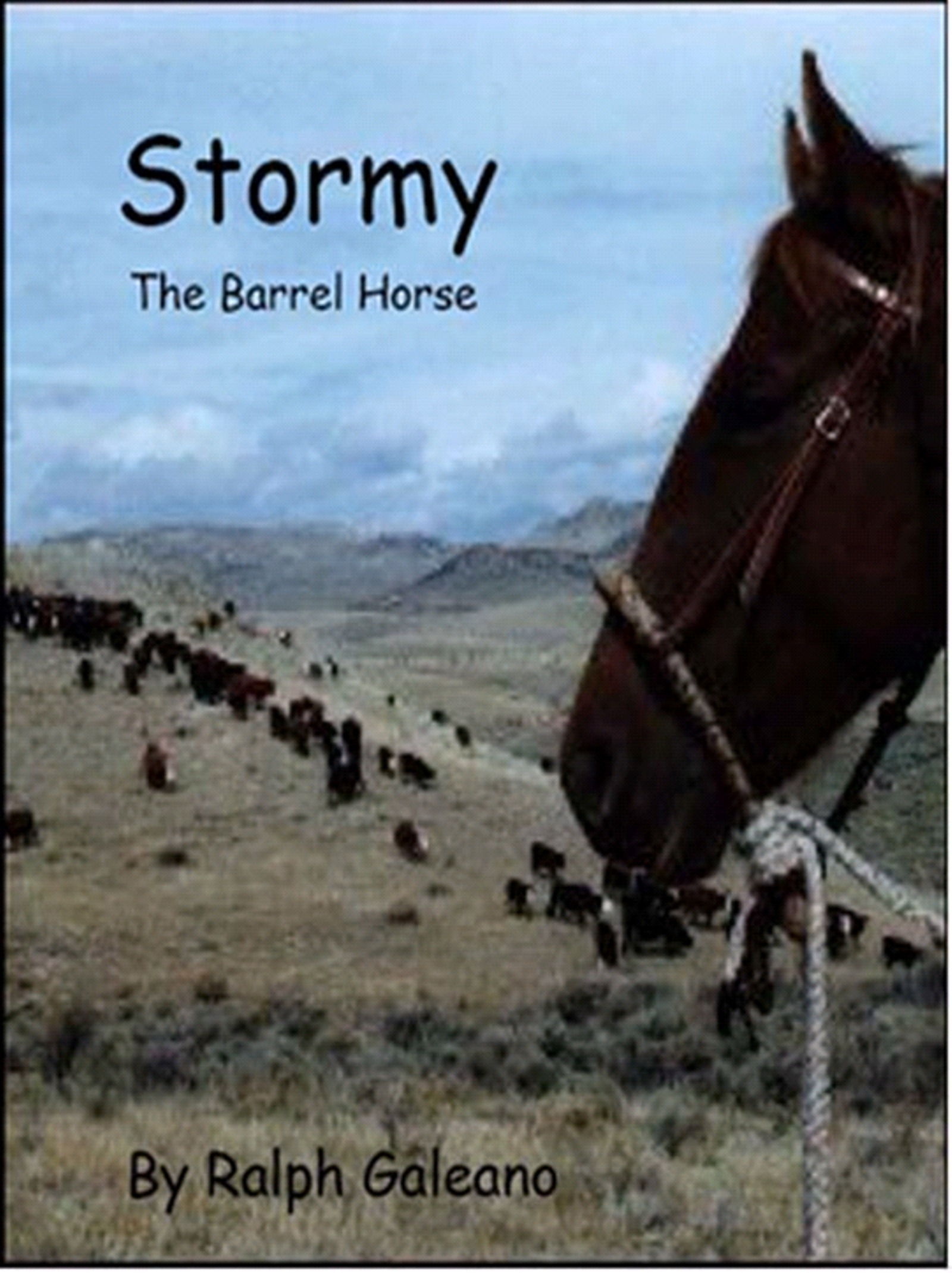 Stormy The Barrel Horse