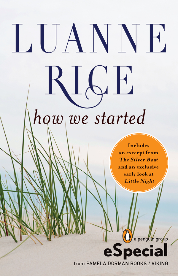 How We Started By: Luanne Rice
