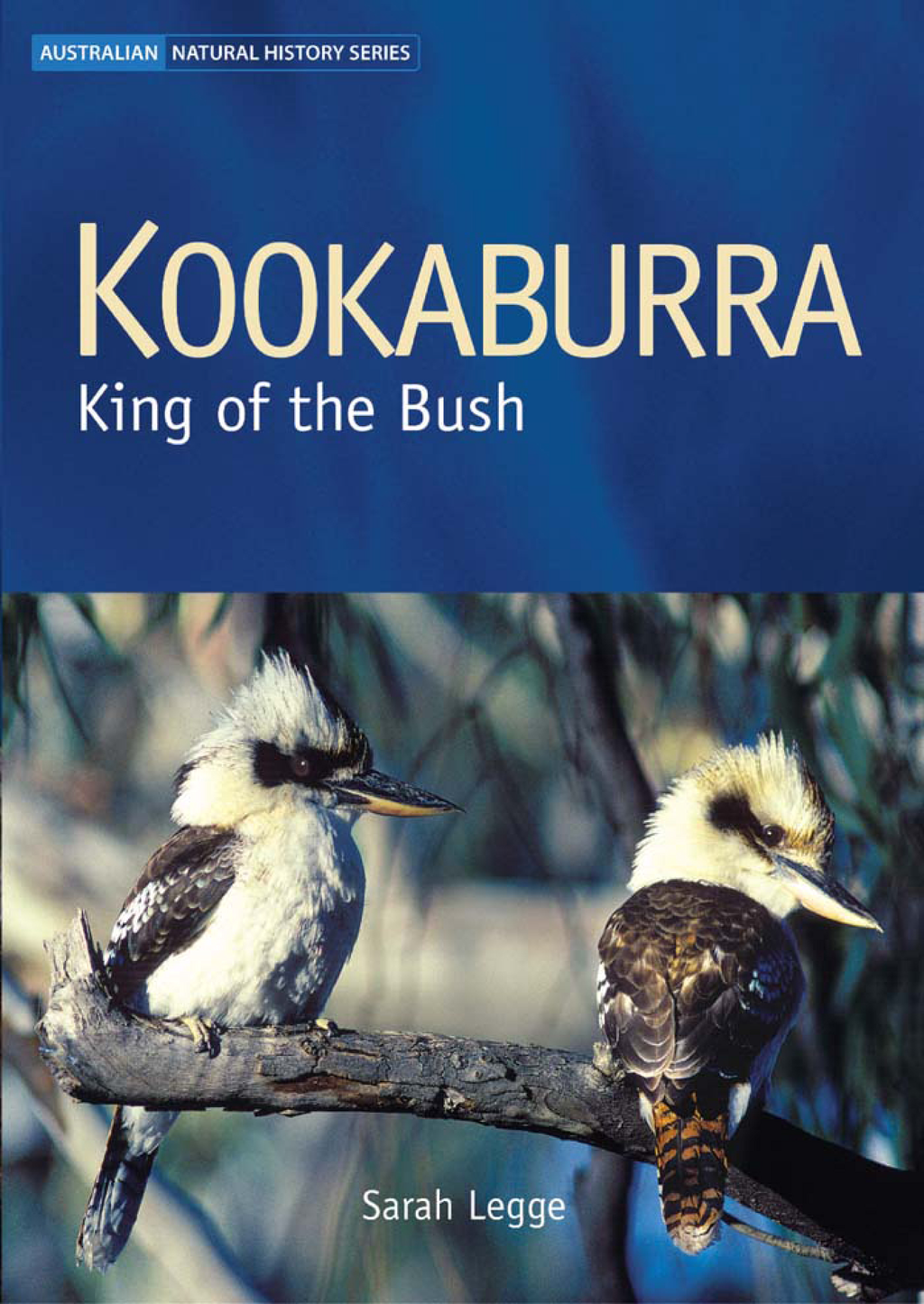 Kookaburra: King of the Bush By: Sarah Legge