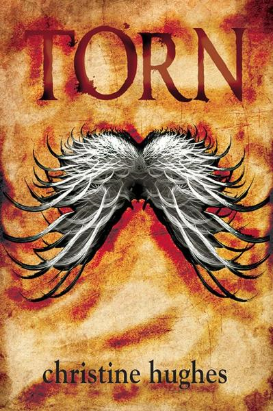 Torn By: Christine Hughes