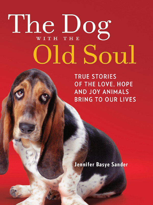 The Dog with the Old Soul By: Jennifer Basye Sander