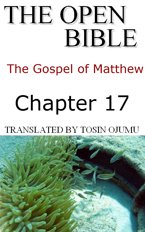 The Open Bible: The Gospel of Matthew: Chapter 17
