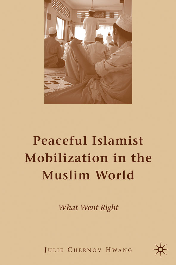 Peaceful Islamist Mobilization in the Muslim World What Went Right