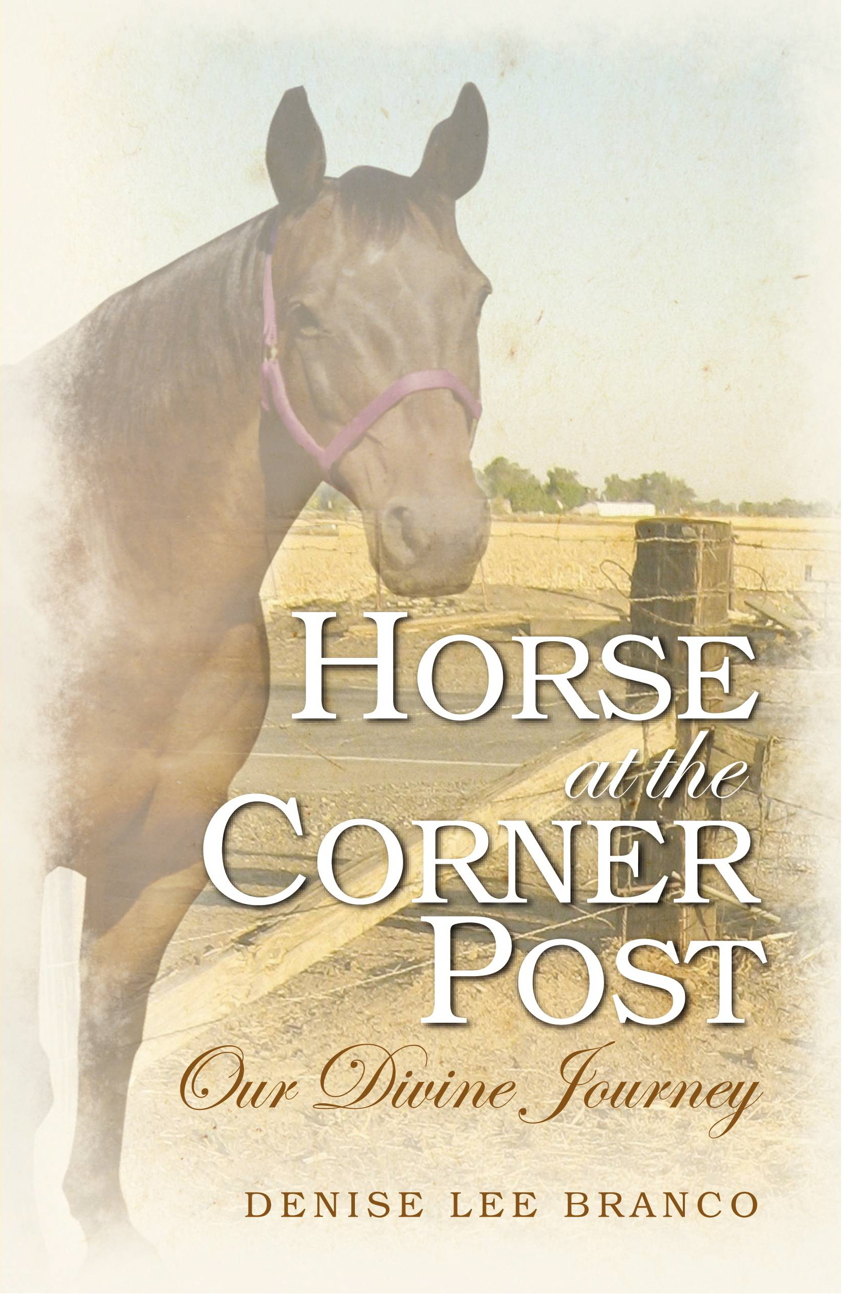 Horse at the Corner Post: Our Divine Journey
