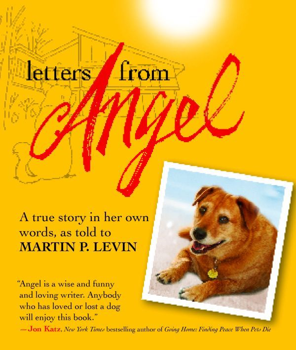 Letters from Angel: A Trusted Companion's Final Notes on Life, Love, and Happiness