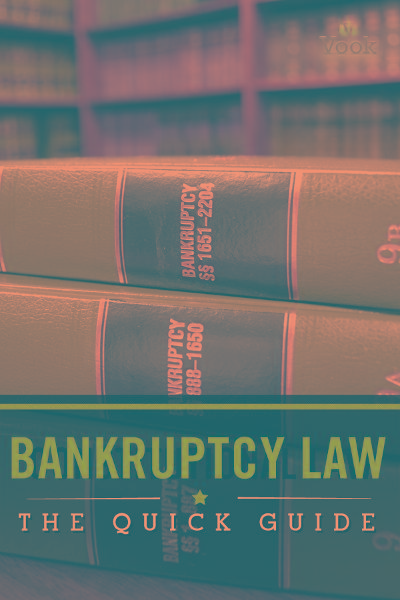 Bankruptcy Law: The Quick Guide