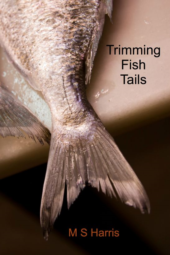 Trimming Fish Tails