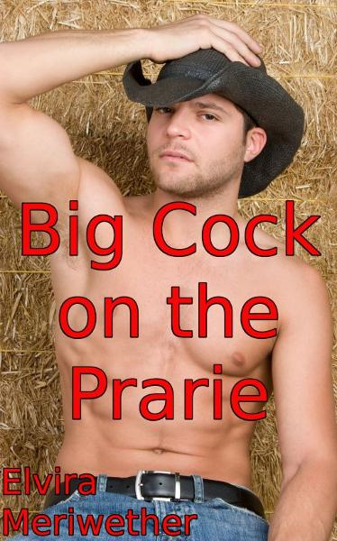 Big Cock on the Prarie By: Elvira Meriwether