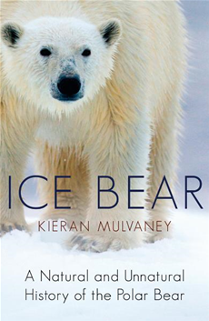 Ice Bear A Natural and Unnatural History of the Polar Bear