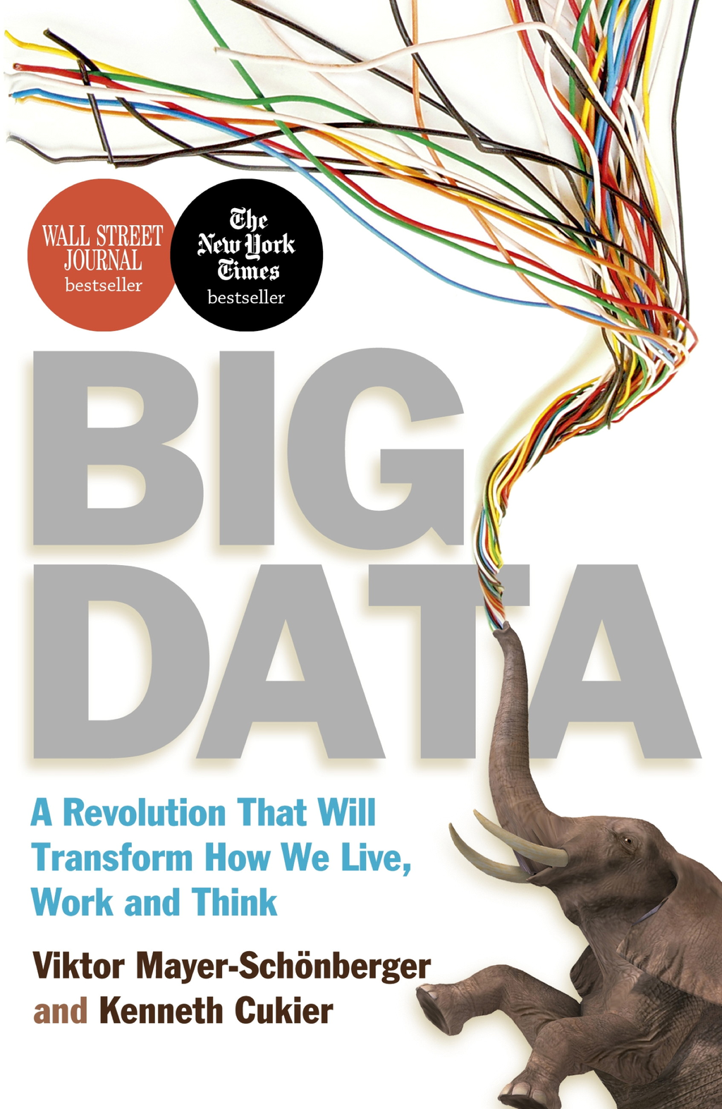 Big Data A Revolution That Will Transform How We Live,  Work and Think