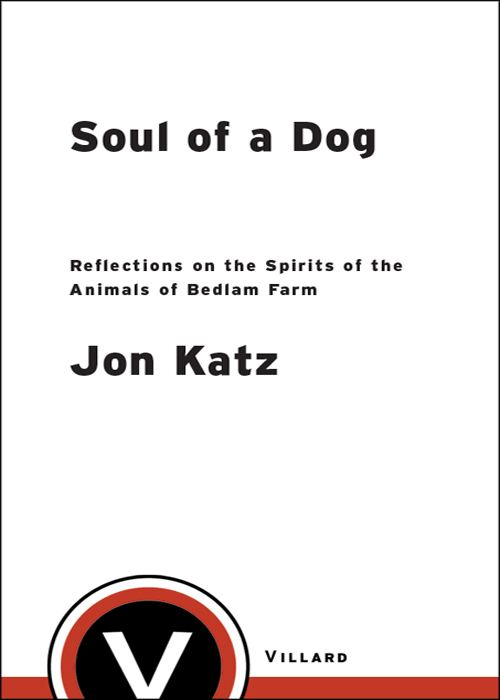 Soul of a Dog By: Jon Katz
