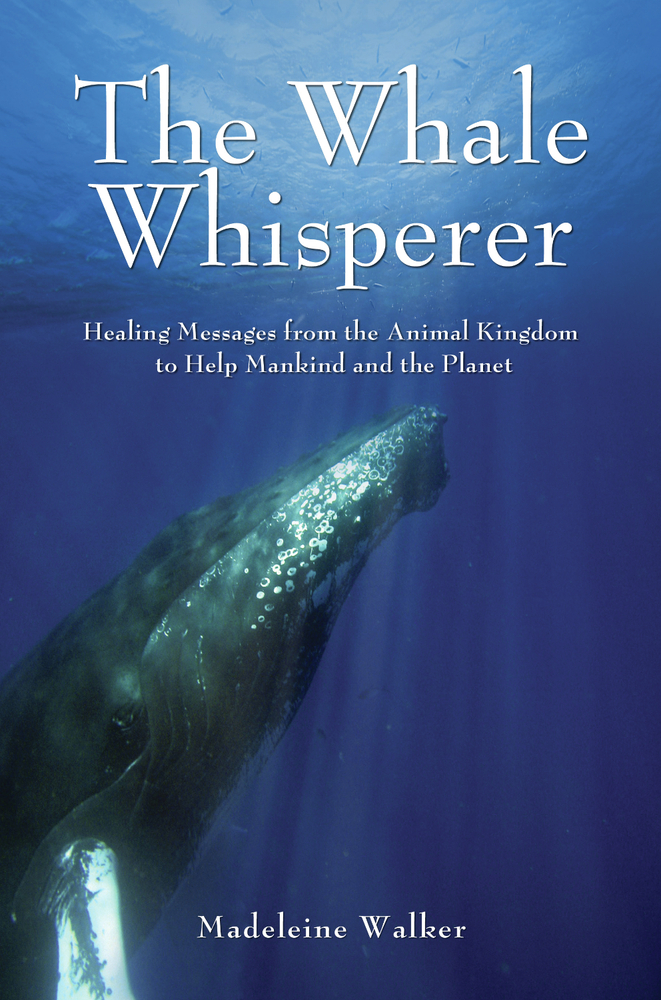 The Whale Whisperer: Healing Messages from the Animal Kingdom to Help Mankind and the Planet By: Madeleine Walker