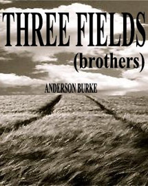 THREE FIELDS (brothers)