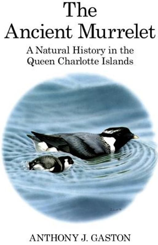The Ancient Murrelet A Natural History in the Queen Charlotte Islands