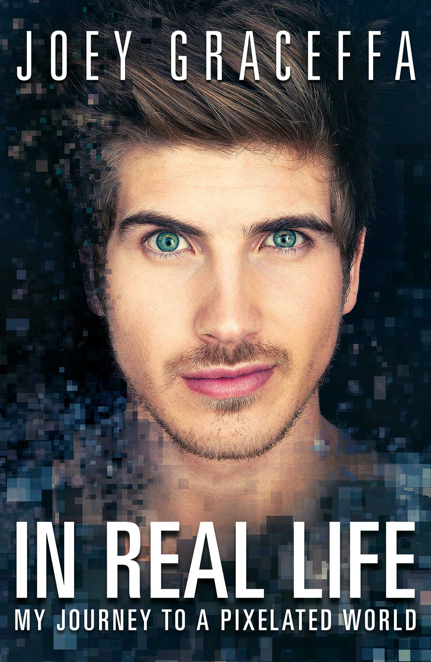 In Real Life My Journey to a Pixelated World