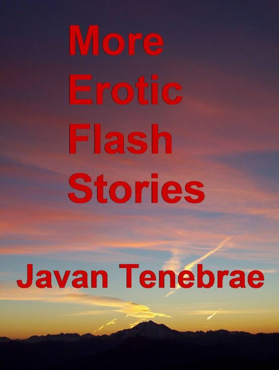 More Erotic Flash Stories