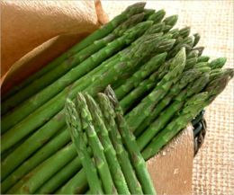 A Crash Course on How to Grow Asparagus