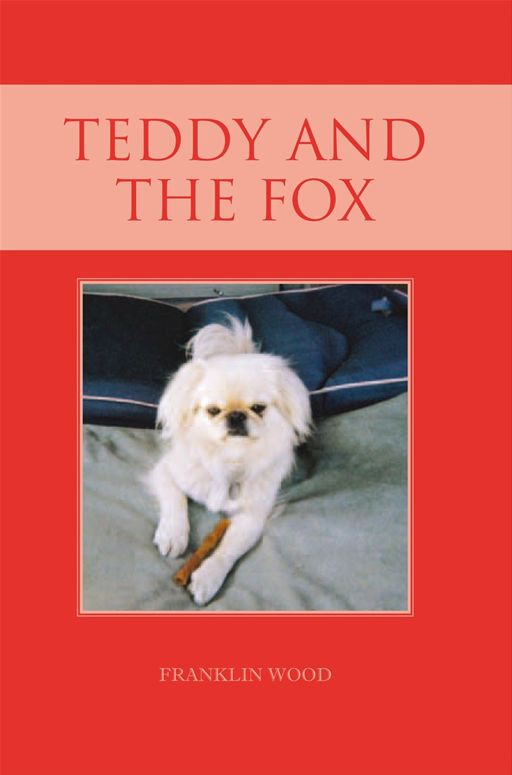 Teddy and the Fox