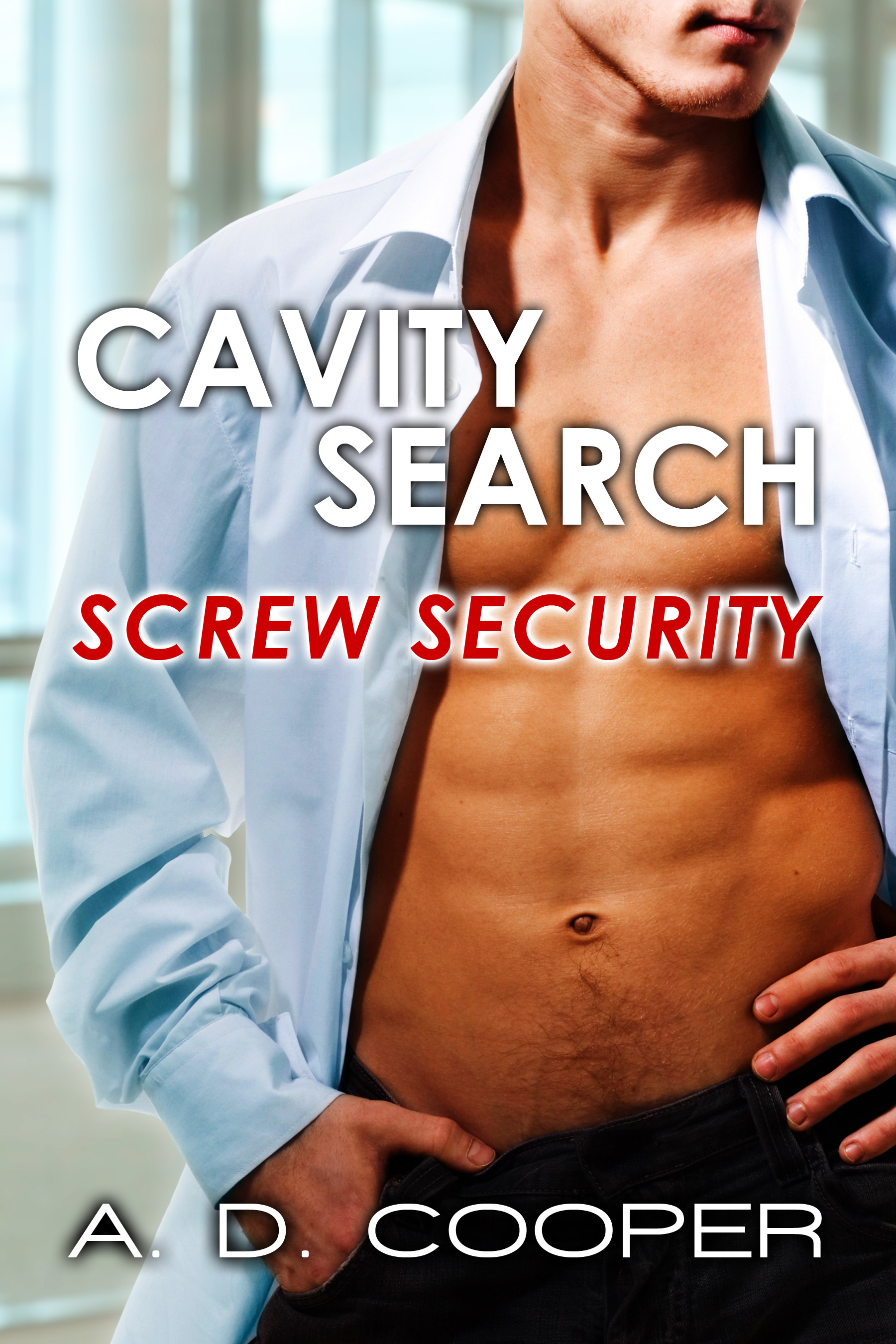 Cavity Search: Screw Security (Gay Erotica)