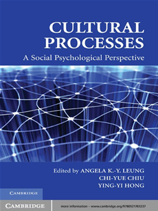 Cultural Processes A Social Psychological Perspective