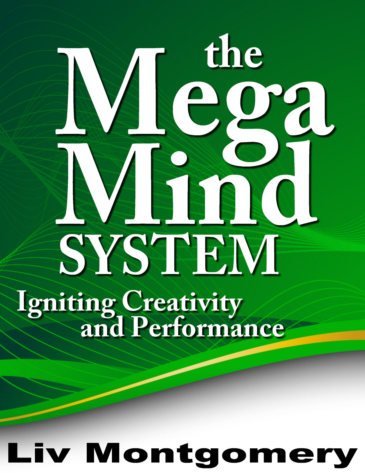 The Mega Mind System