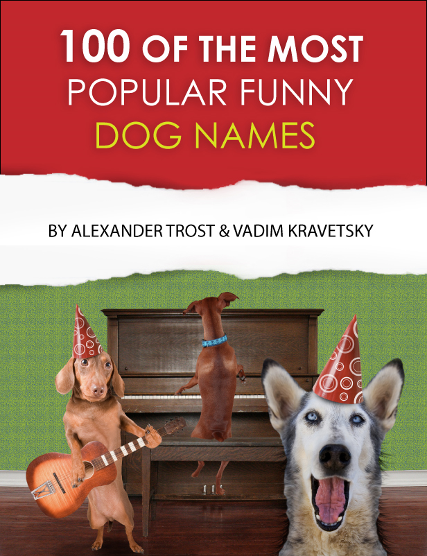 100 of the Most Popular Funny Dog Names