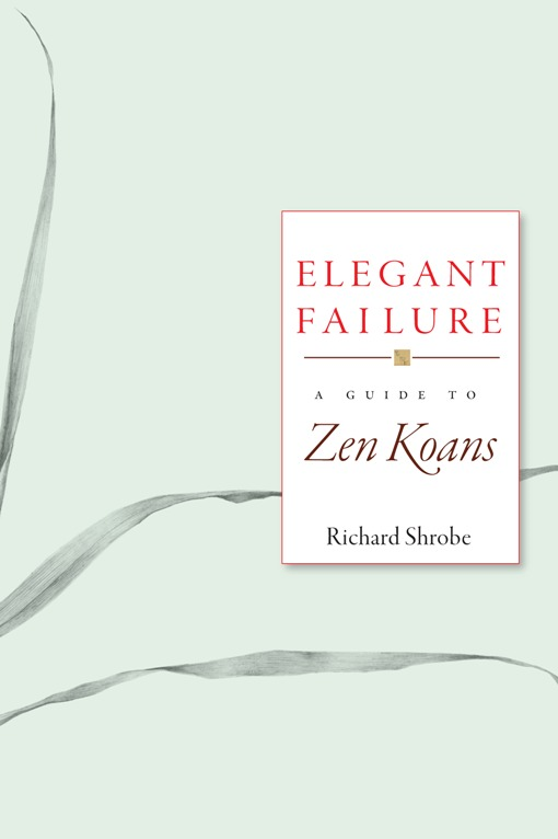 Elegant Failure By: Richard Shrobe