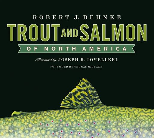 Trout and Salmon of North America By: Robert Behnke,Joe Tomelleri