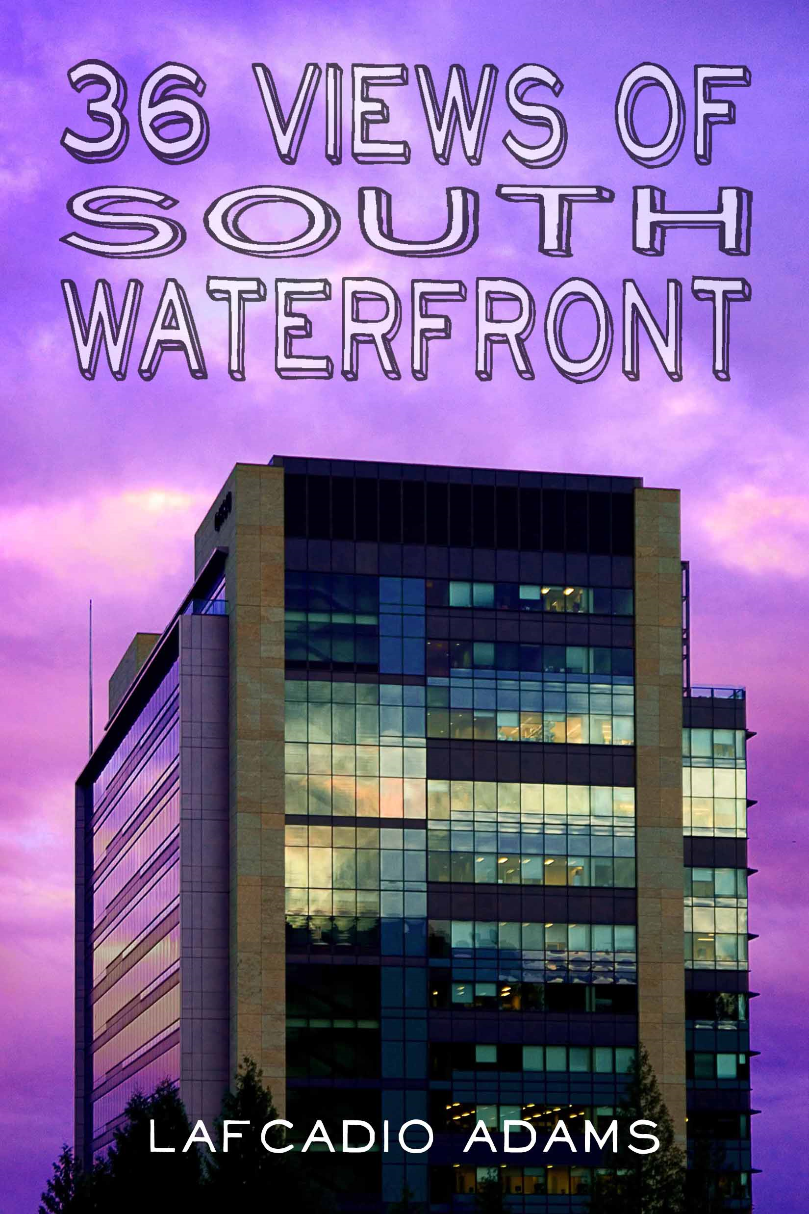 36 Views of South Waterfront